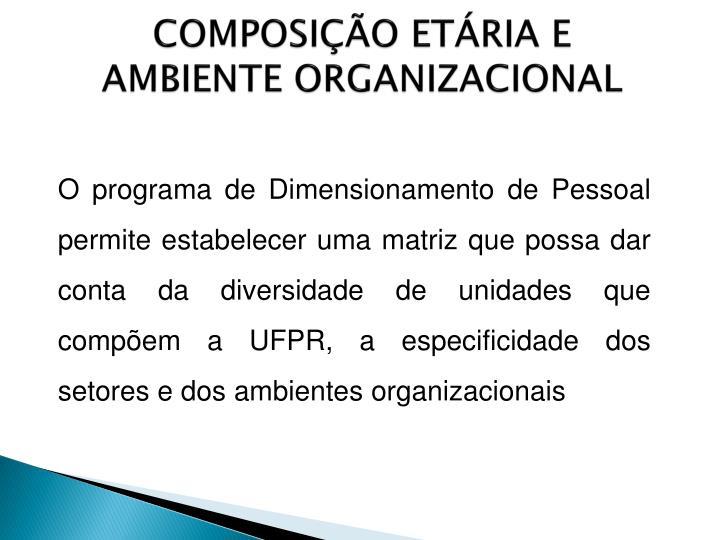 COMPOSIÇÃO ETÁRIA E AMBIENTE ORGANIZACIONAL