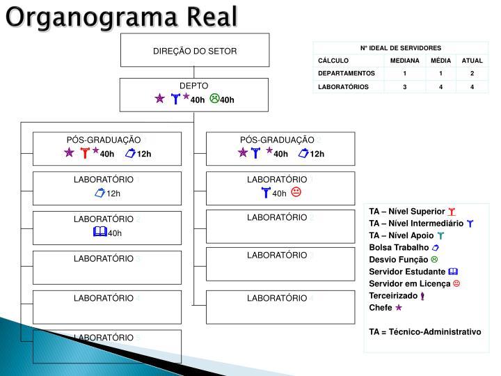 Organograma Real