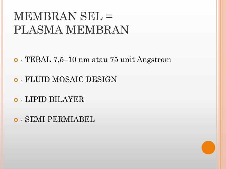 MEMBRAN SEL =