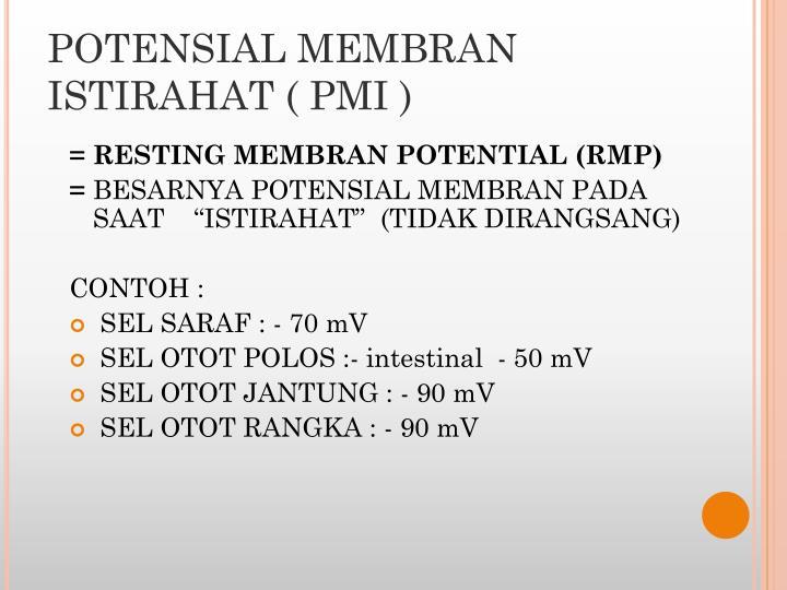 POTENSIAL MEMBRAN ISTIRAHAT ( PMI )
