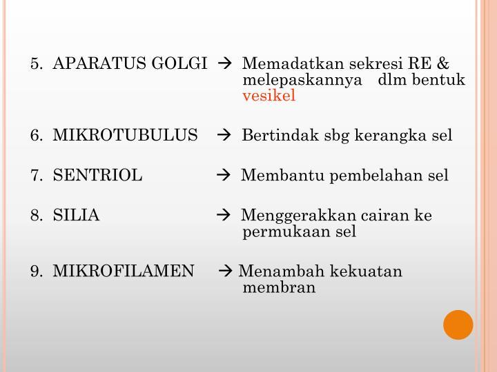 5.  APARATUS GOLGI