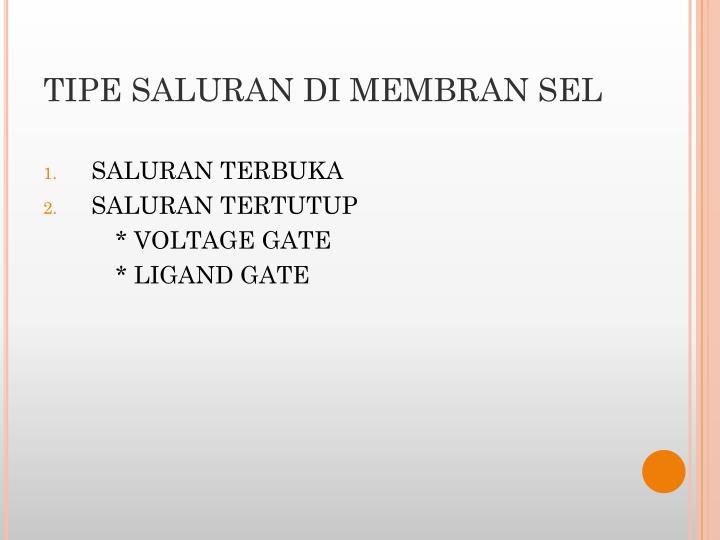TIPE SALURAN
