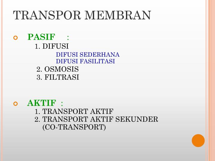 TRANSPOR MEMBRAN