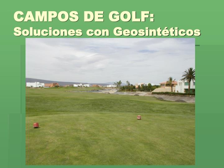 CAMPOS DE GOLF: