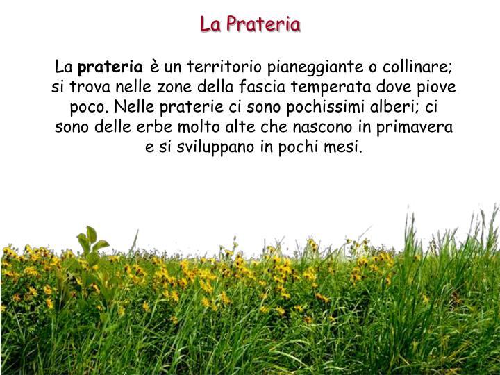 La Prateria