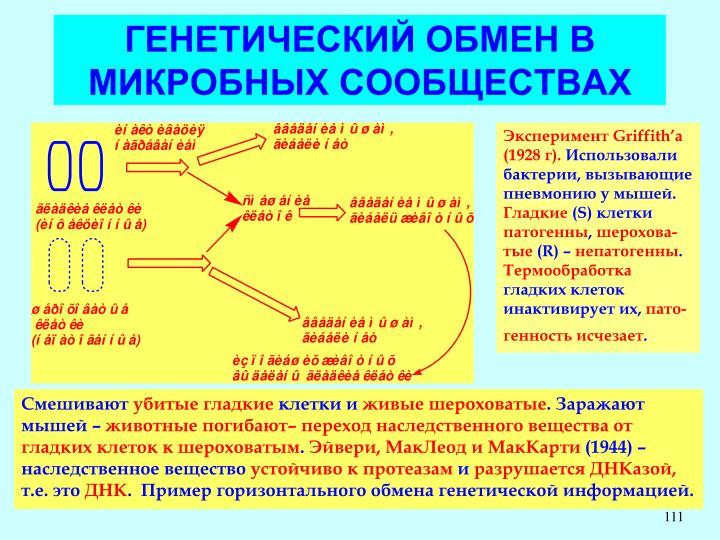 ГЕНЕТИЧЕСКИЙ ОБМЕН В МИКРОБНЫХ СООБЩЕСТВАХ