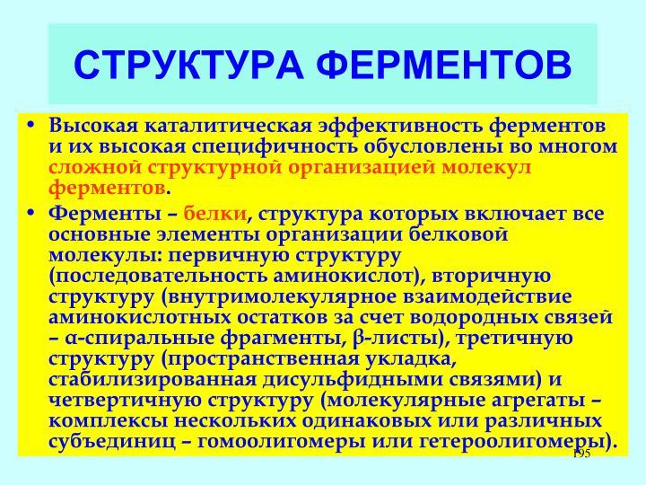 СТРУКТУРА ФЕРМЕНТОВ