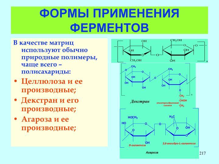 ФОРМЫ ПРИМЕНЕНИЯ ФЕРМЕНТОВ
