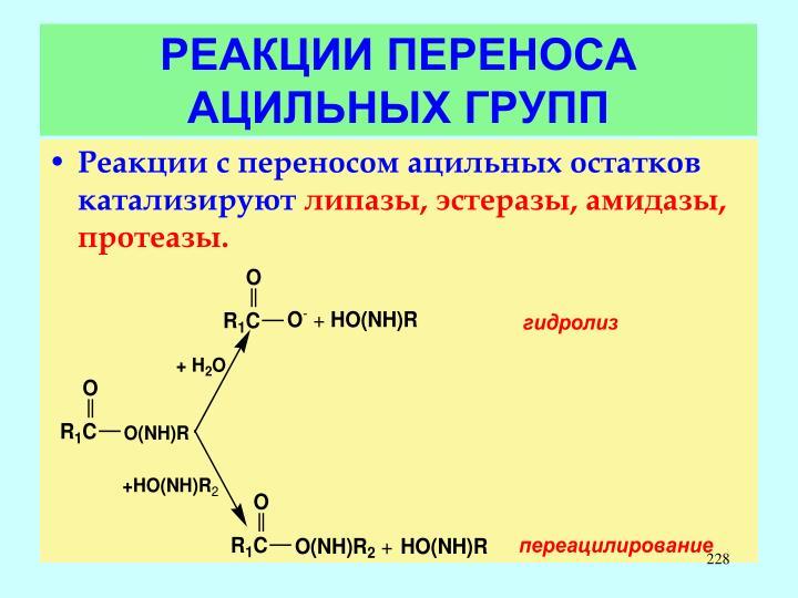 РЕАКЦИИ ПЕРЕНОСА АЦИЛЬНЫХ ГРУПП