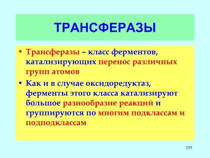 ТРАНСФЕРАЗЫ
