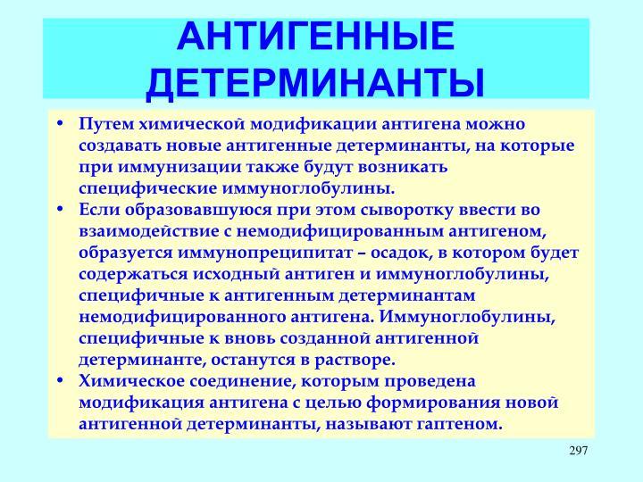 АНТИГЕННЫЕ ДЕТЕРМИНАНТЫ