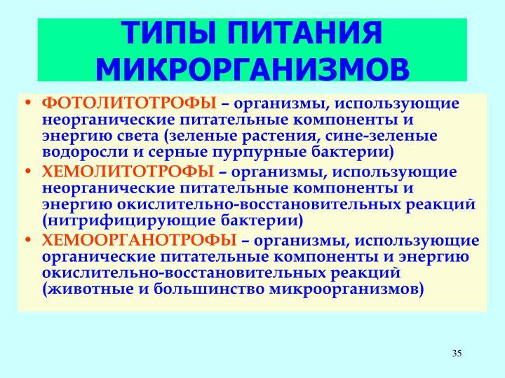 ТИПЫ ПИТАНИЯ МИКРОРГАНИЗМОВ
