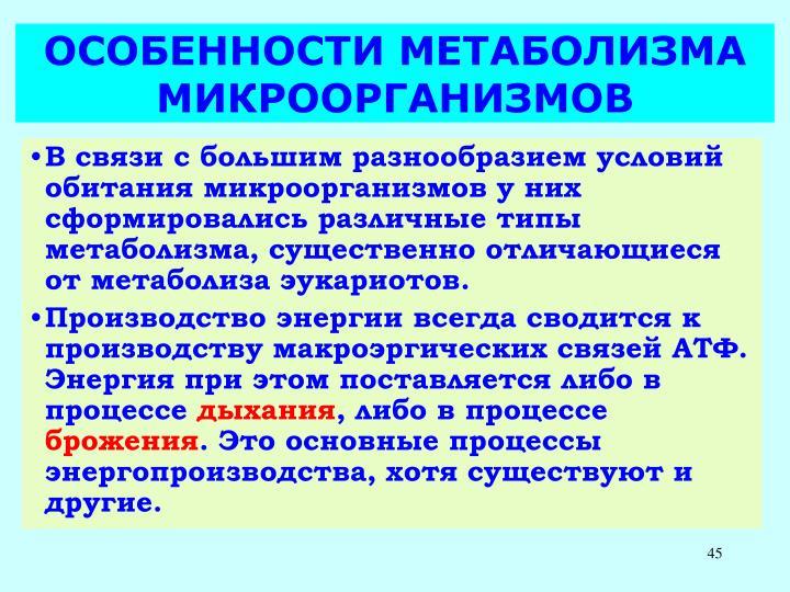 ОСОБЕННОСТИ МЕТАБОЛИЗМА МИКРООРГАНИЗМОВ