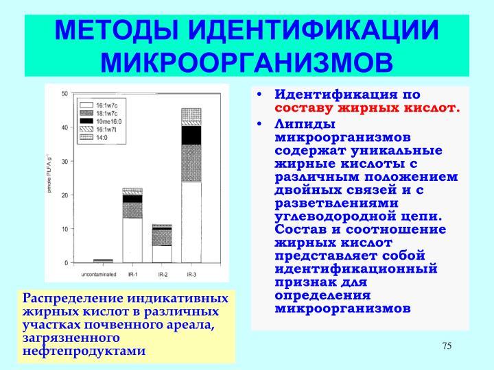 МЕТОДЫ ИДЕНТИФИКАЦИИ МИКРООРГАНИЗМОВ