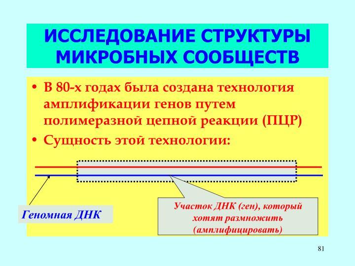 Участок ДНК (ген), который хотят размножить (