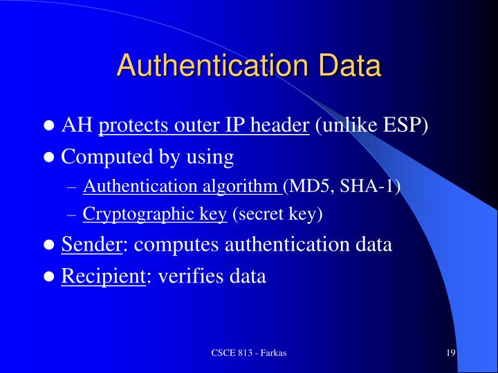 Authentication Data