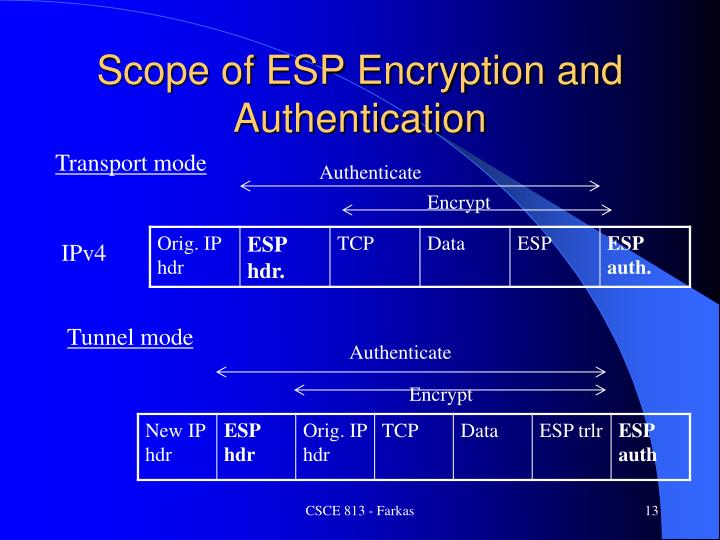 Scope of ESP Encryption and Authentication