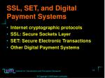 ssl set and digital payment systems