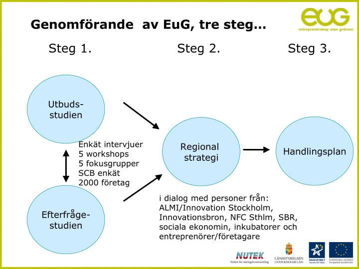 Genomförande  av EuG, tre steg…