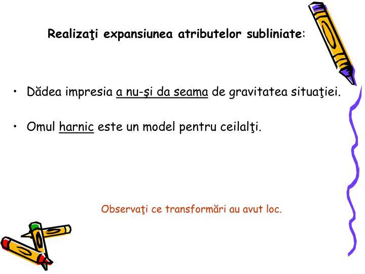 Realizaţi expansiunea atributelor subliniate