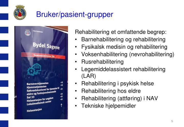 Bruker/pasient-grupper