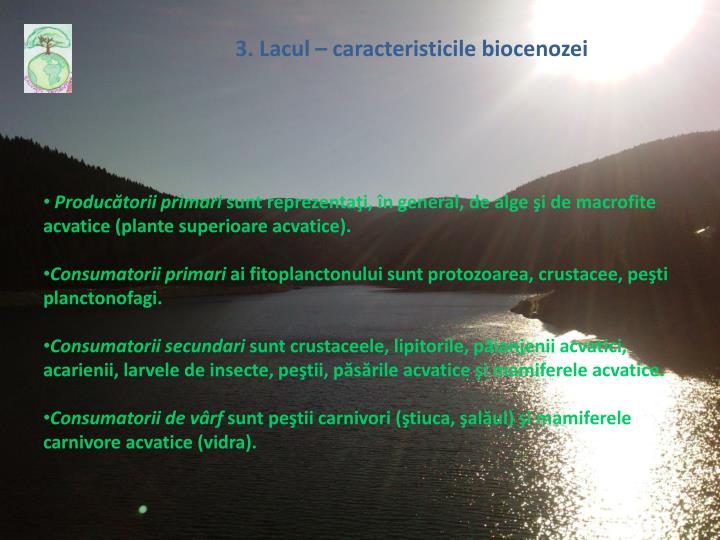 3. Lacul – caracteristic