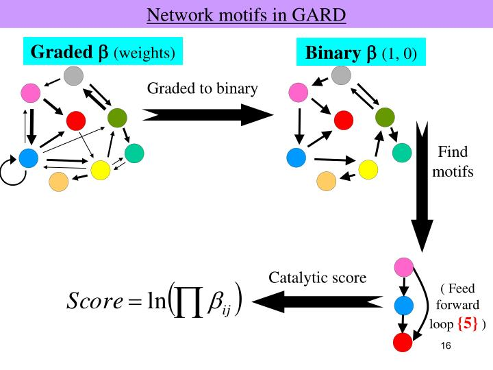 Network motifs in GARD