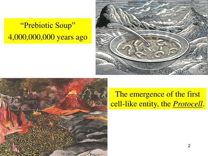 """Prebiotic Soup"""