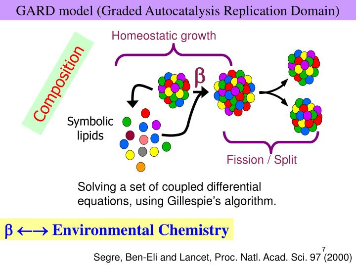 GARD model (Graded Autocatalysis Replication Domain)
