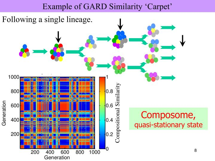 Example of GARD Similarity 'Carpet'