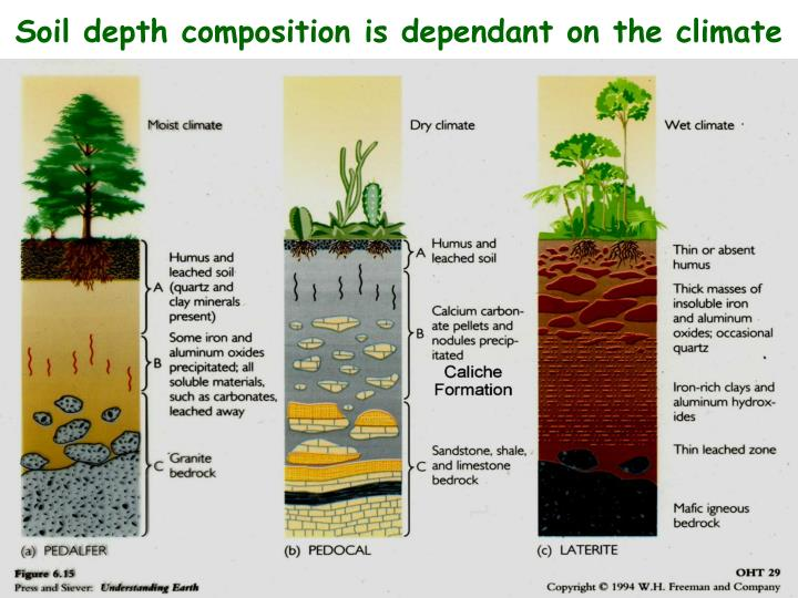 Soil depth composition is dependant on the climate