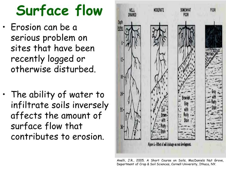 Surface flow