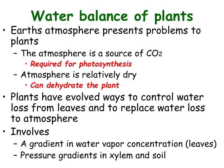 Water balance of plants