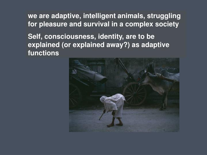 we are adaptive, intelligent animals, struggling for pleasure and survival in a complex society