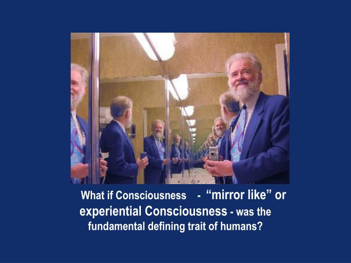 What if Consciousness    -
