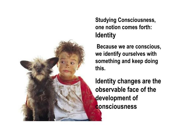 Studying Consciousness, one notion comes forth: