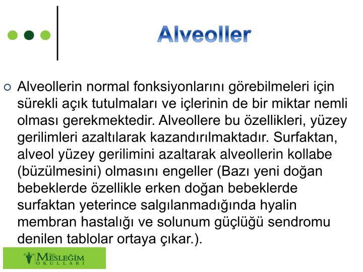 Alveoller
