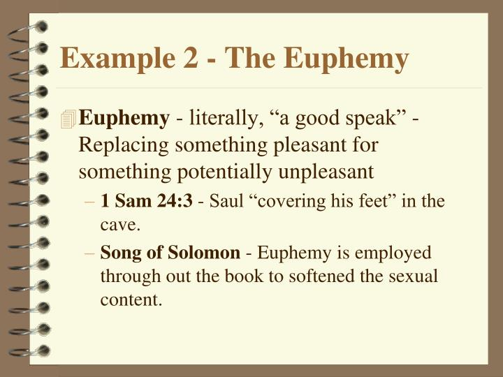 Example 2 - The Euphemy