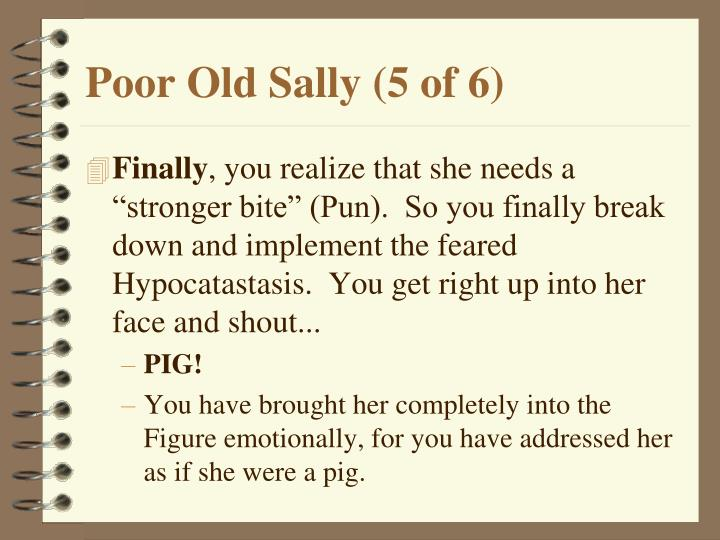 Poor Old Sally (5 of 6)