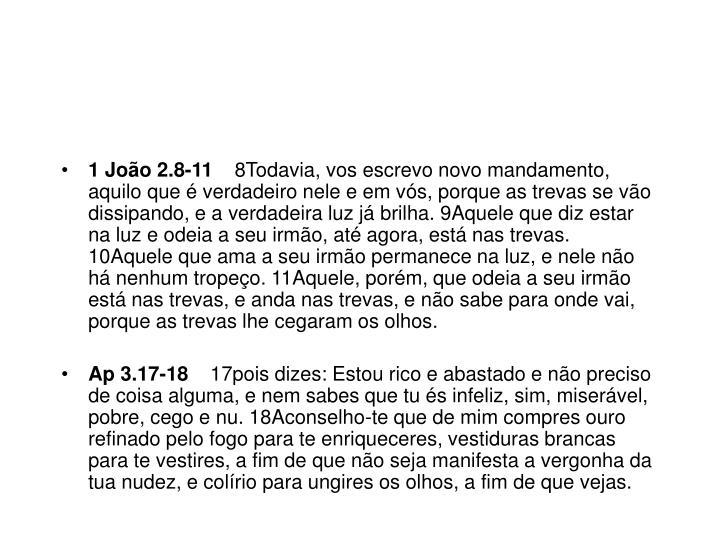 1 João 2.8-11