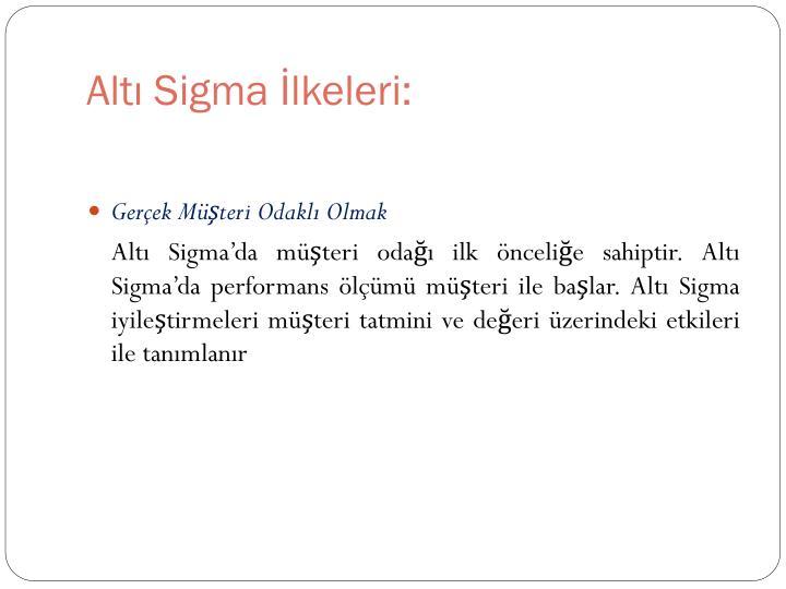 Altı Sigma İlkeleri: