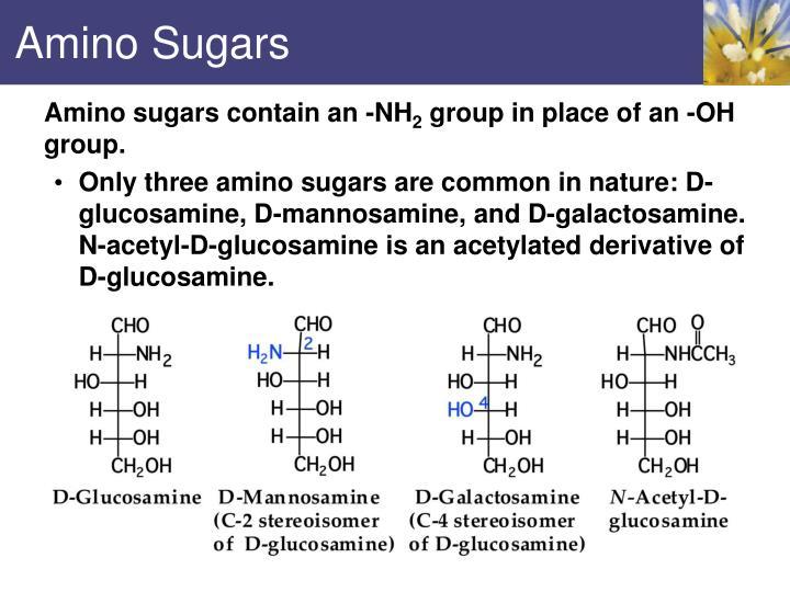 Amino Sugars