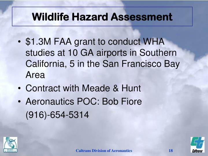 Wildlife Hazard Assessment