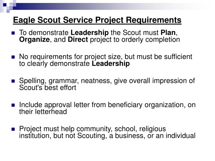 Eagle scout service project requirements1