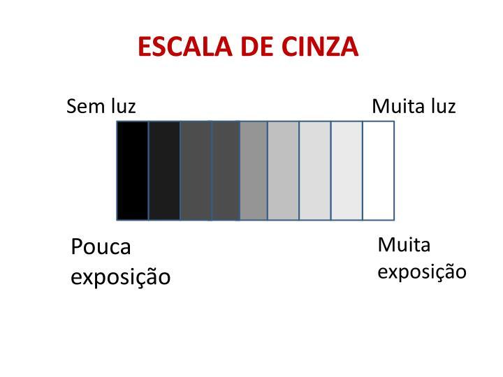 ESCALA DE CINZA