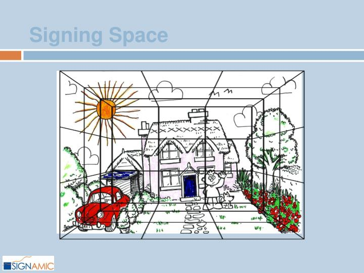 Signing Space