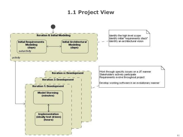 1.1 Project View