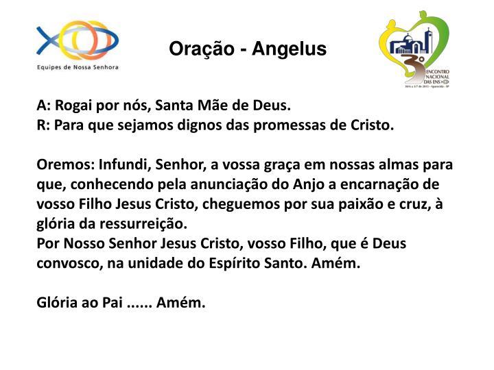 Oração - Angelus