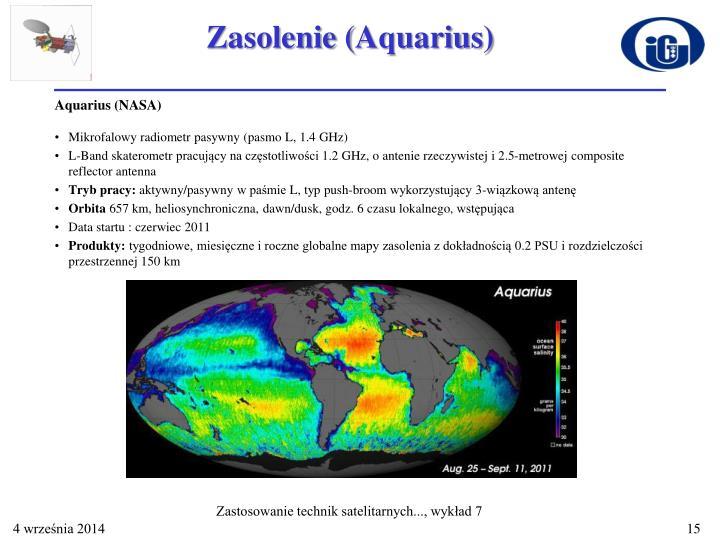 Zasolenie (