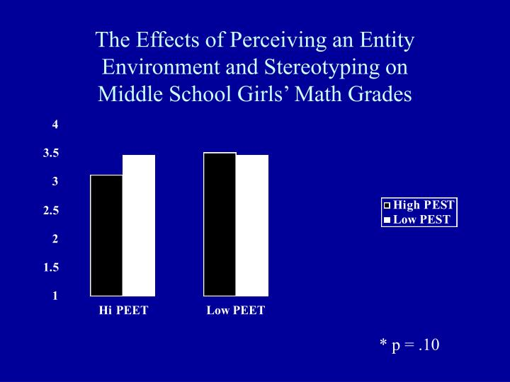 The Effects of Perceiving an Entity Environment and Stereotyping on